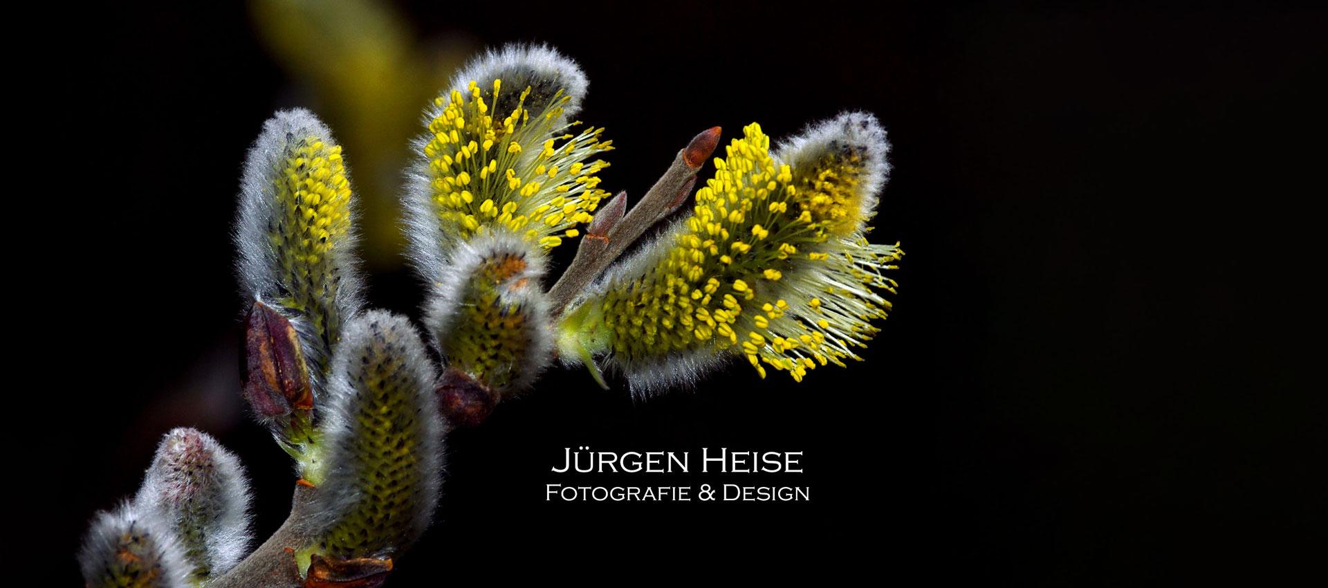 bildermobil Juergen Heise Startbild